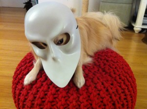 Courtesy of Dogs in Sleep No More Masks; http://dogsinsleepnomoremasks.tumblr.com